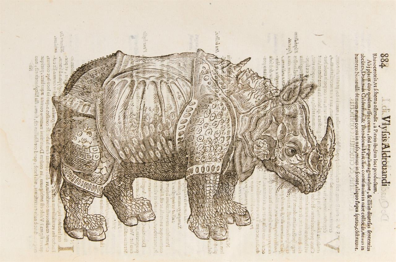 U. Aldrovandi, Quadrupedum omnium bisulcorum historia. Ed. M. A. Bernia. Bologna 1642.