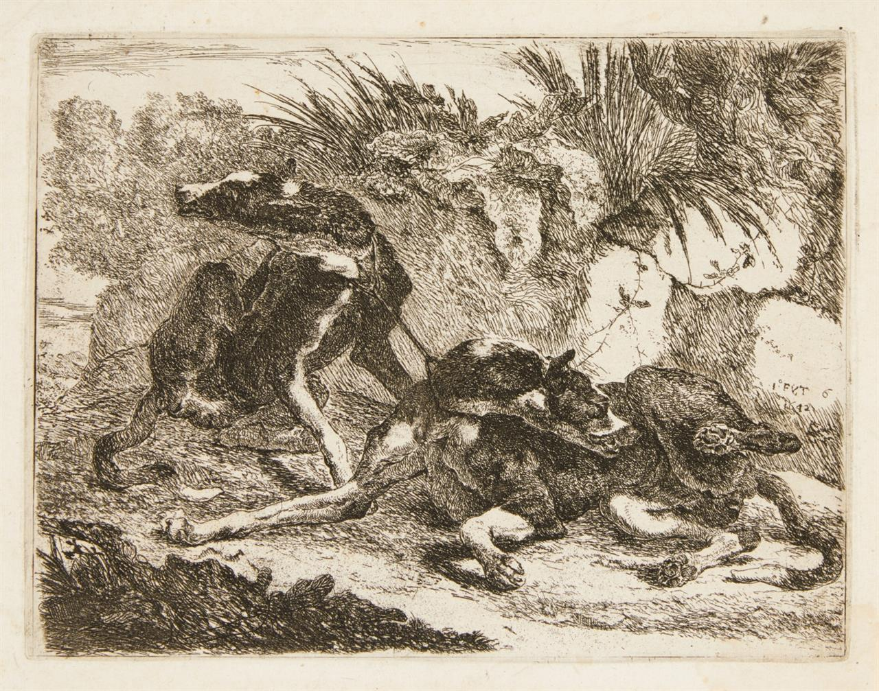 Jan Fyt. Zwei Hunde, davon einer liegend. 1642. Radierung. H 11.