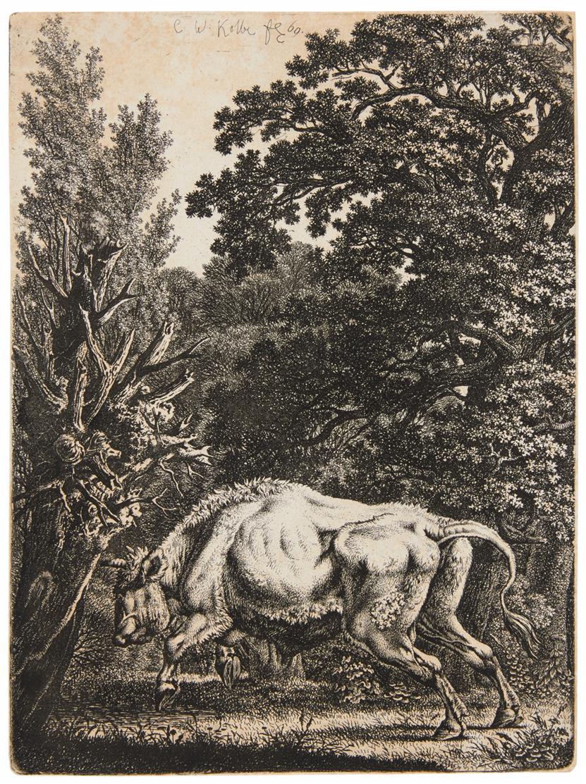 Carl Wilhelm Kolbe. Walddickicht, vor dem ein Stier nach links springt. Radierung.
