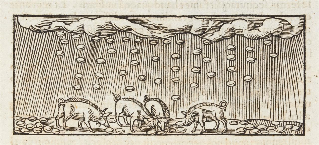F. Nausea, Libri mirabilium septem. Köln 1532.