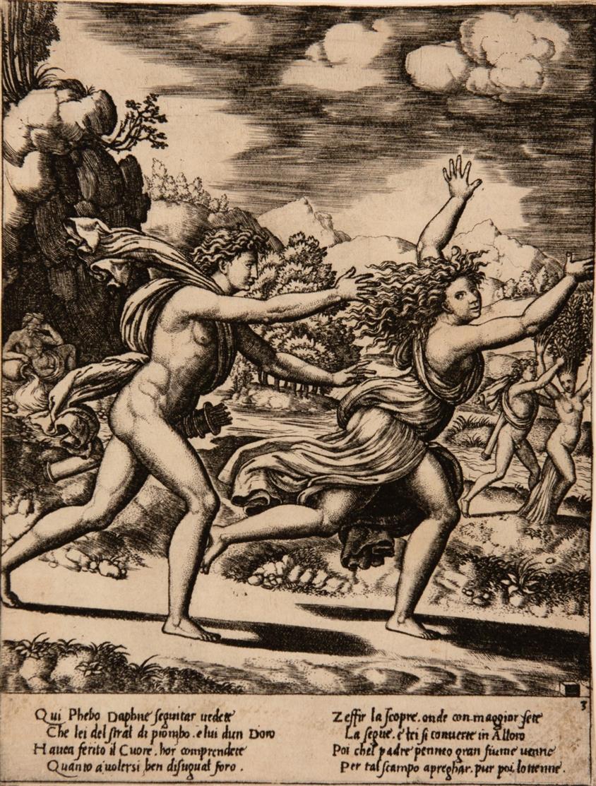 Meister mit dem Würfel. Apollo und Daphne. Kupferstich. B. 21.